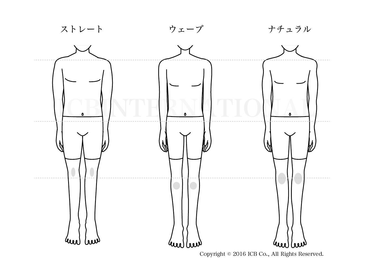 男性骨格診断